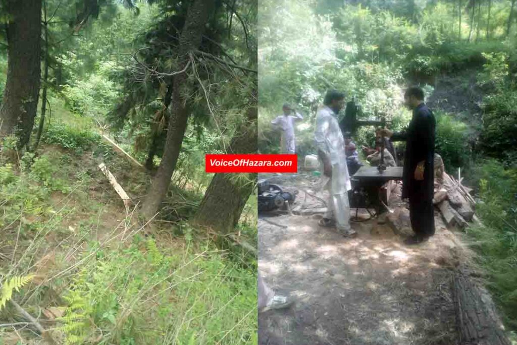 Forest Dept. Recover SAW-MACHINE from Forest of Nathiagali (2)