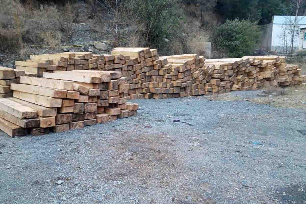 Forest Cutting in Abbottabad